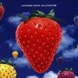 Lightning Seeds – Jollification